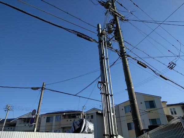 大阪、守口でクスノキの伐採後のマンション