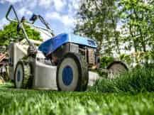 雑草の草刈り・除草