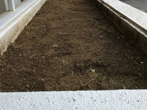 箕面マンションの植栽スペースの草抜き後