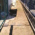 箕面市のマンション 草刈り 草引き
