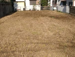 箕面で空き地の草刈り、除草剤散布
