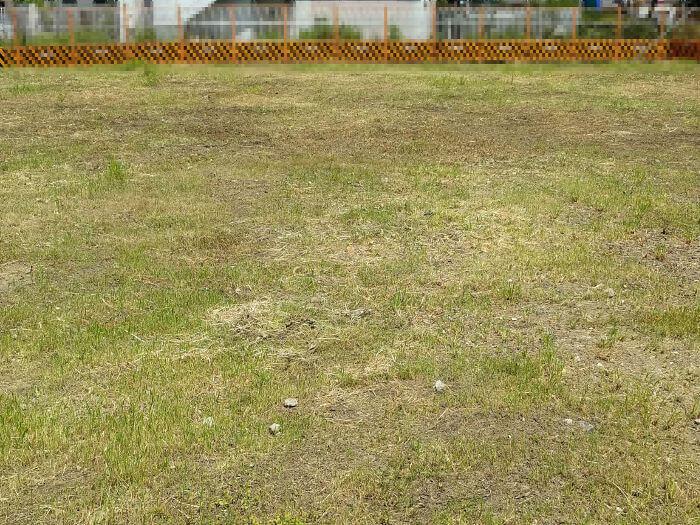 お庭の雑草を防ぐ方法
