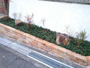 箕面市で玉竜(リュウノヒゲ)の植栽