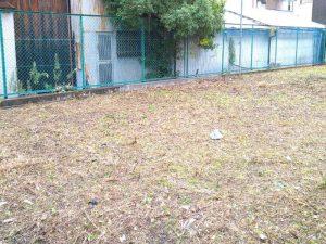 空き地の草刈り後