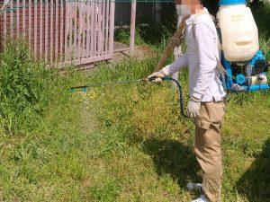 除草剤(液体)散布の様子