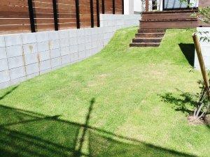 箕面のお庭の芝刈り