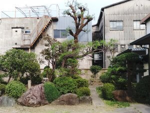 庭木の手入れ後の庭