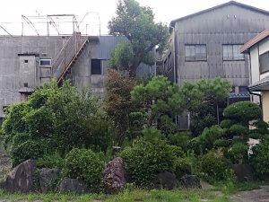 庭木が伸び放題の庭
