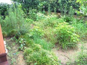 お庭の雑草にお困りの宝塚のお客様邸
